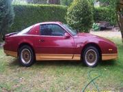 Pontiac 1988 1988 Pontiac Firebird Trans AM GTA